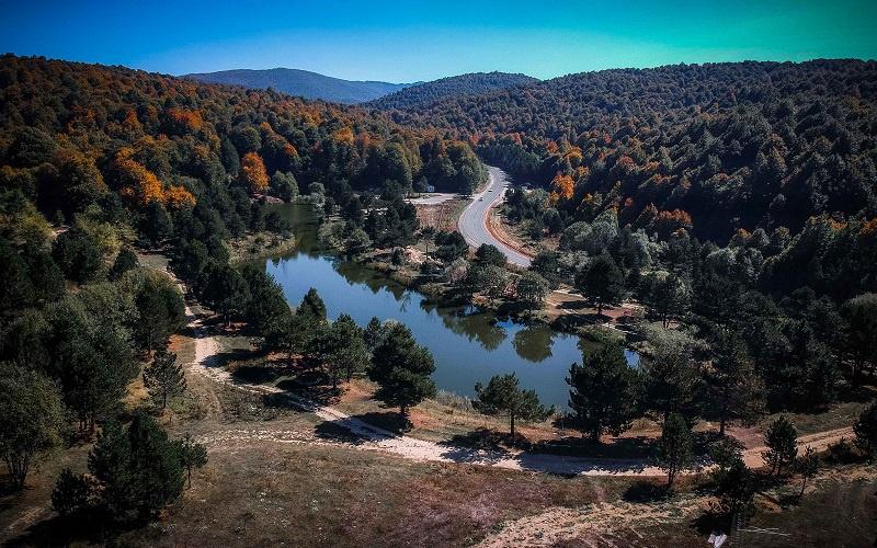 Fotoğraf: Orman Genel Müdürlüğü