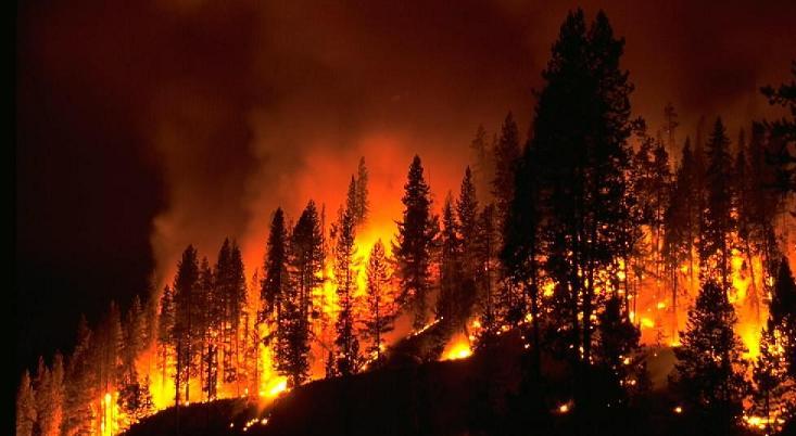 Yangın Nedir? Yangının Nedenleri, Yangını Önleme ve Yangından Korunma Yolları