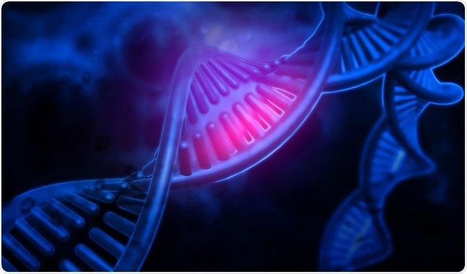 Kendini çoğaltabilen ilk molekül/sistem hangisidir?