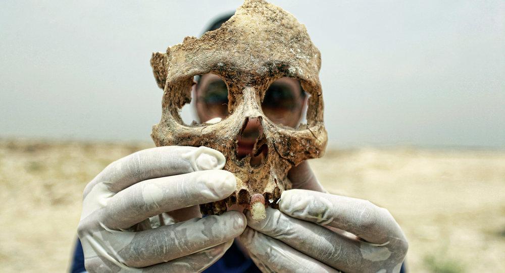 'Filipinler'de bulunan fosiller yeni bir insan türüne ait'