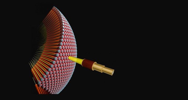 Neuron unites 2 theoretical models on motion detection