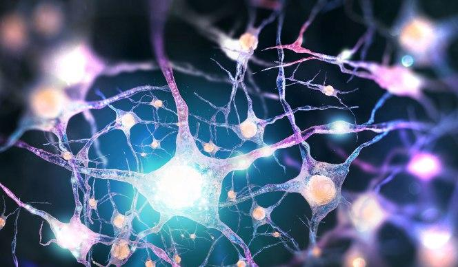 Beyinlerimiz Düşündüğümüzden Daha Aktif!