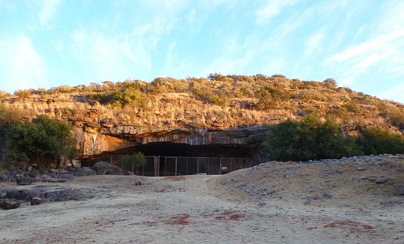 2 Milyon Yaşındaki Diş Fosili ve Afrika'nın Paleoiklimi