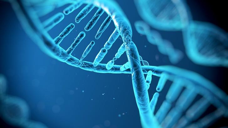 DNA ikileşmesi nedir