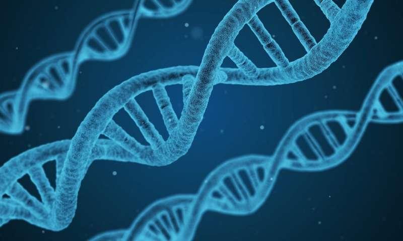 DNA Molekülüne Veri Depolamak İçin Tam Otomatik Sistem Geliştirildi