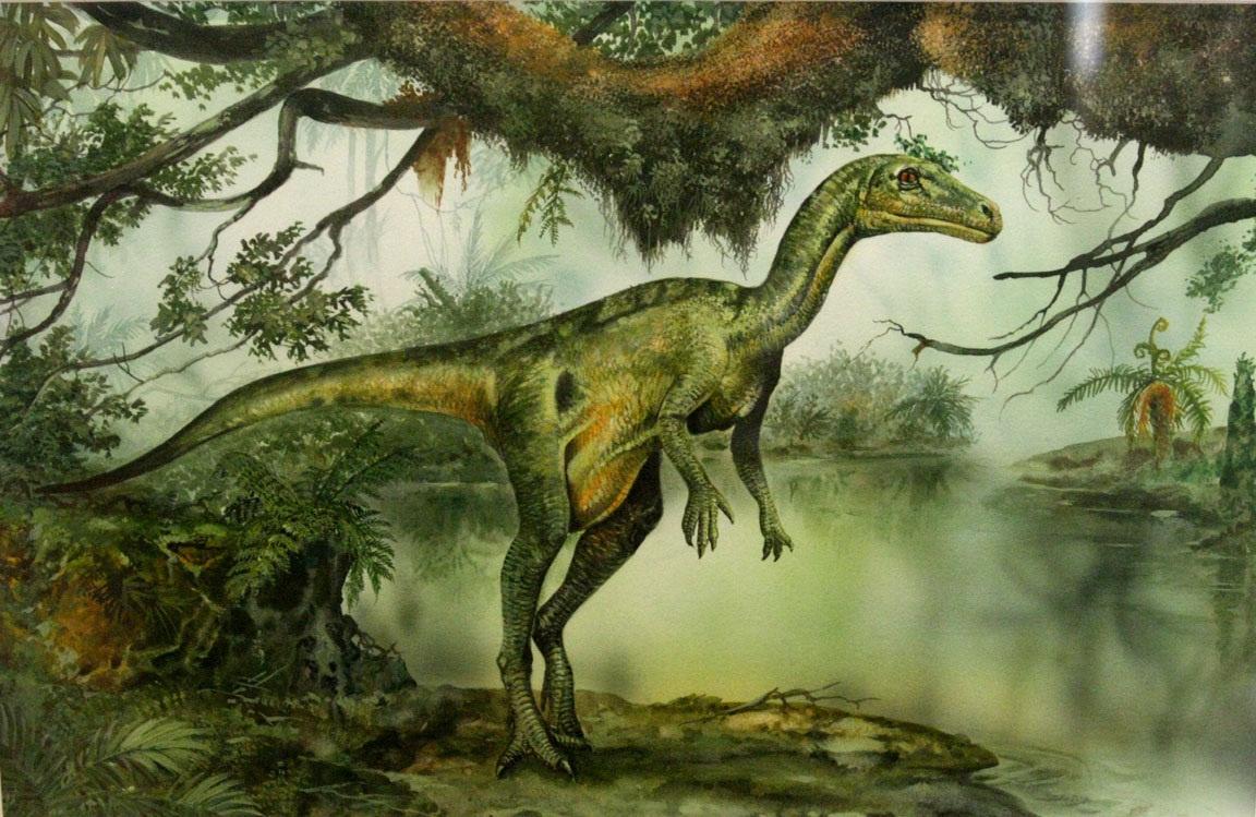 60 milyon yıllık dinozor fosilinde insanları da etkileyen bir hastalığa rastlandı