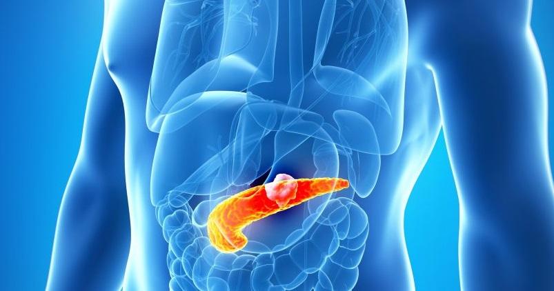 Mide Kanserinde MikroRNA Deregülasyonu ve MikroRNA Hedeflerinin Mekanizmaları