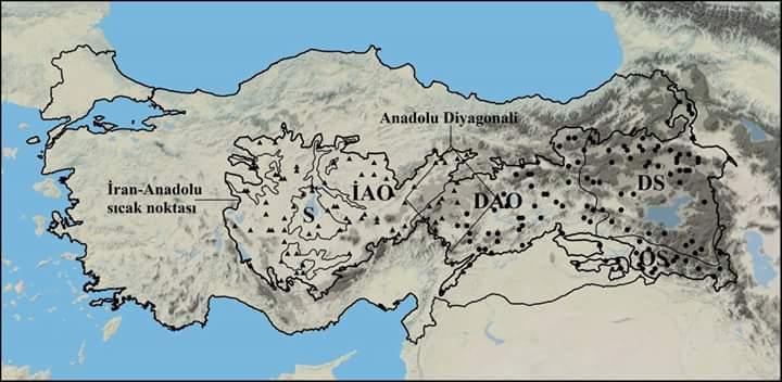 Anadolu Diyagonali: Bir Biyocoğrafi Sınırın Anatomisi