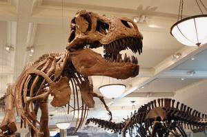 Dinozorlar: Dev Sürüngenlerin Yok Oluşu