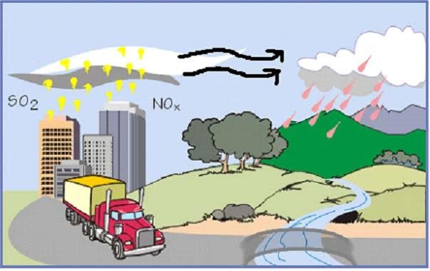 Asit Yağmurlarının Toprak Kimyasına Etkileri
