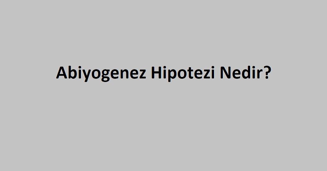 Abiyogenez Hipotezi Nedir?