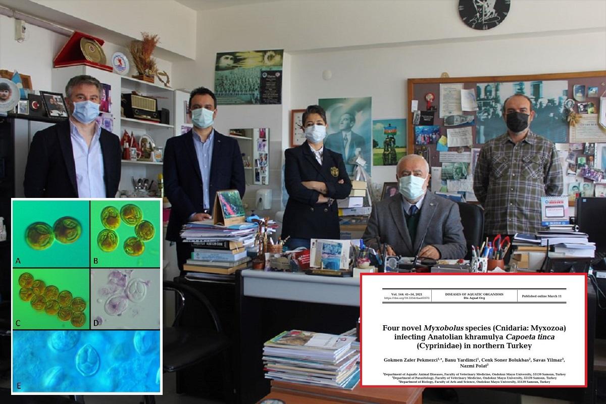 Fotoğraf: Doç. Dr. G. Zafer Pekmezci ve Arkadaşları