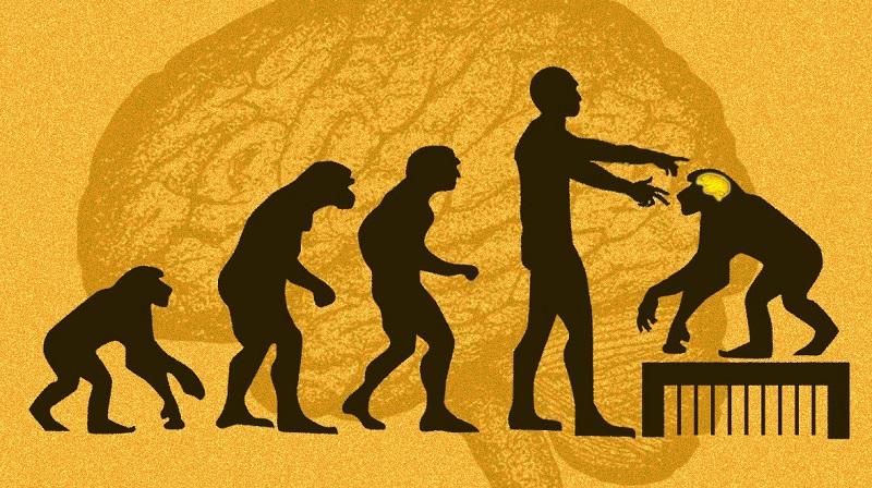 Görsel Telif: Ms. Tech; Evolutio