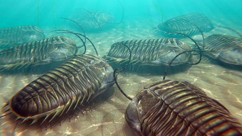 Canlılar arasındaki kolektif yaşam ve grup davranışı, 480 milyon yıl önceye dayanıyor