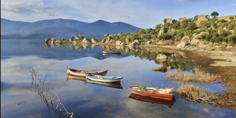 'Türkiye'nin sulak alanlarının yarısı, ekosistem özelliklerini kaybetti'