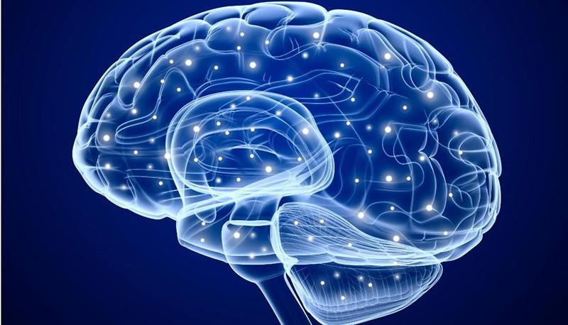 Doğuştan görme engelli olsalar bile insanların sesleri algılamasında görsel sistemin elemanları etkili