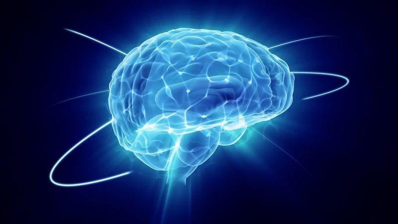 İnsan beynindeki bazı hücrelerin ve ilişkili genlerin aktivitesi ölümden sonra artıyor
