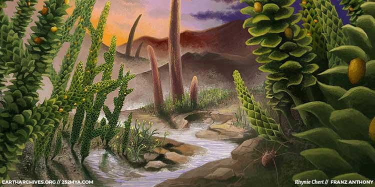 Bitki Evrimi 1/5: Karaya İlk Çıkanlar