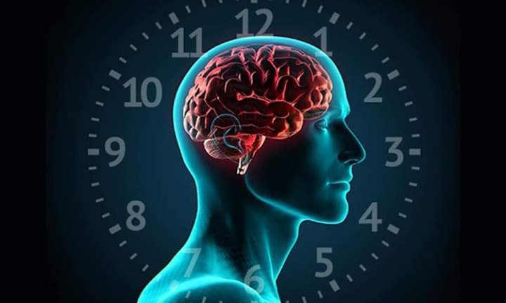 Bedenimizdeki Durmayan Saat: Biyolojik Saat (CIRCADIAN RHYTHM)