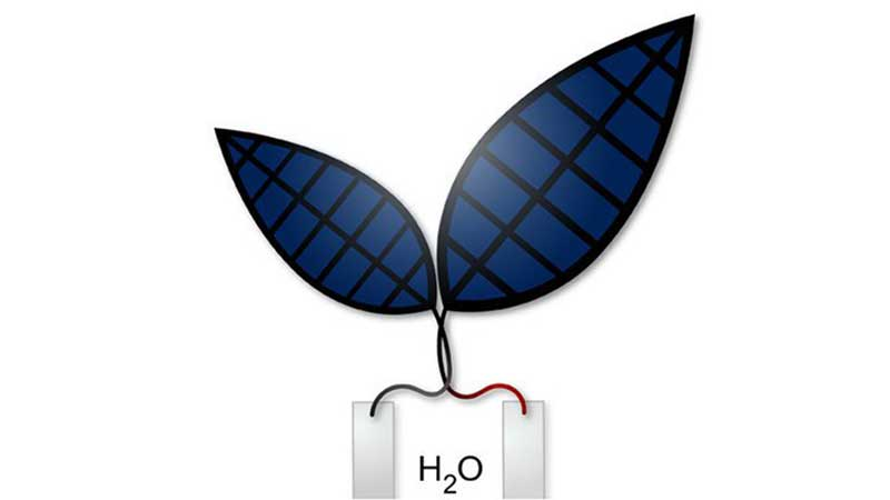 Gün ışığını sıvı yakıta çeviren biyonik yaprak