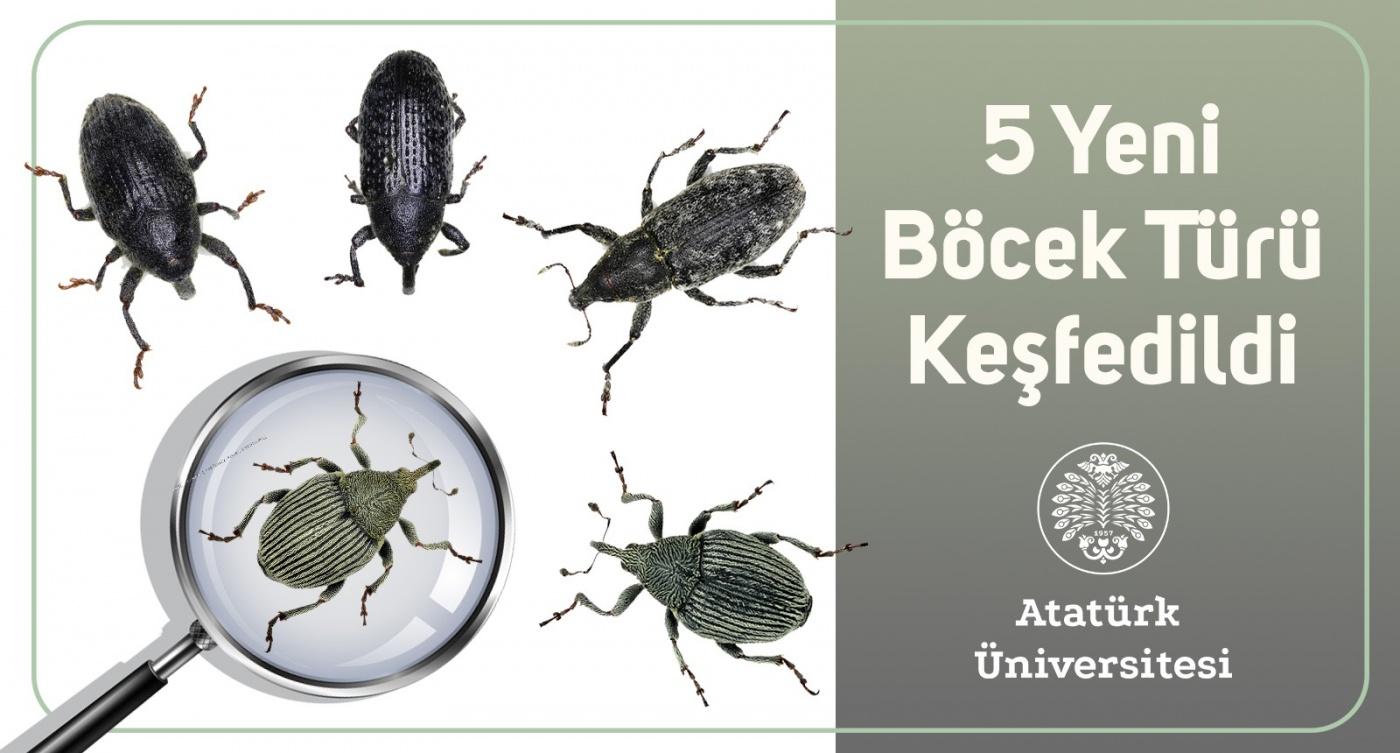 Fotoğraf: Atatürk Üniversitesi