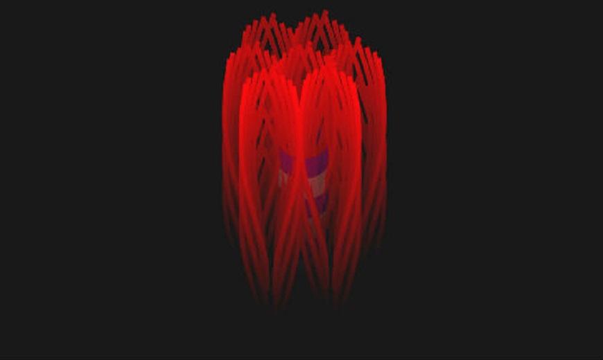 İnsan Kemiğinin Nanoyapısı Üç Boyutlu Olarak Yapılandırıldı