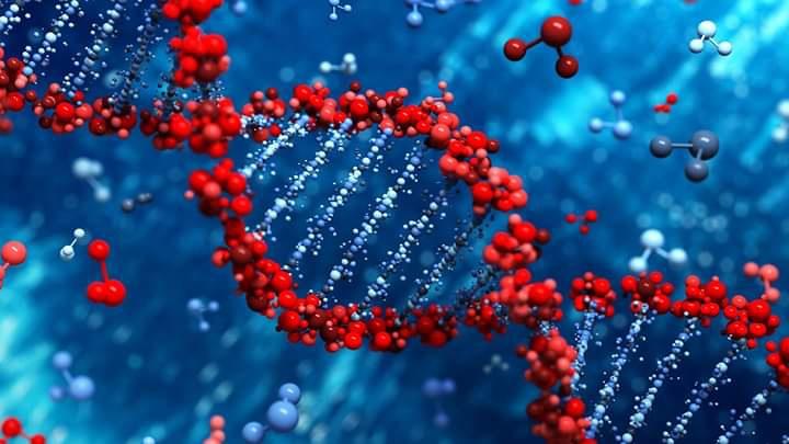 Çevresel DNA Nedir (eDNA) ?