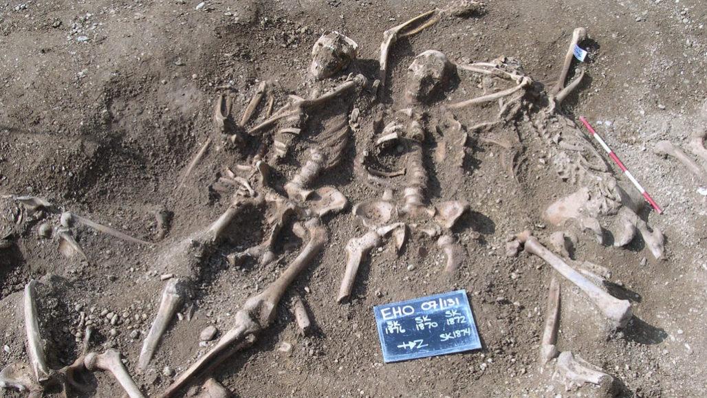 Çiçek hastalığının etmeni olan virüsler Viking Çağı'nda da yaygındı