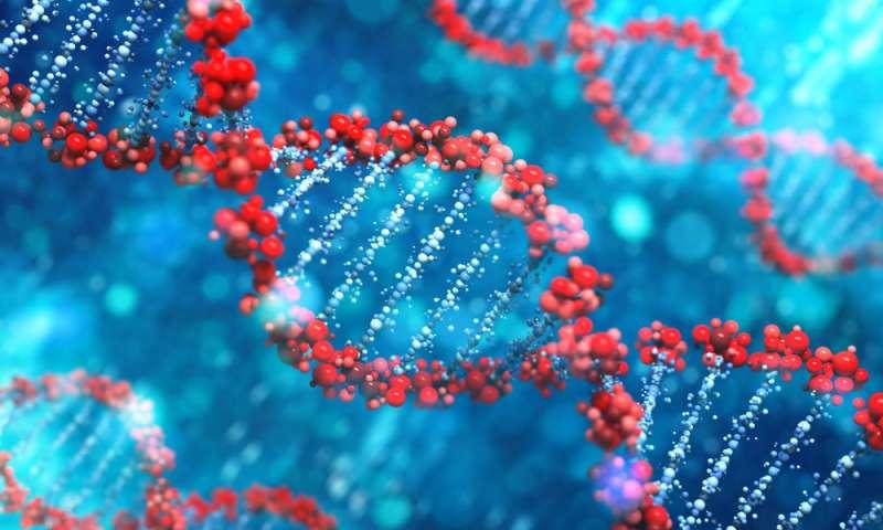 Bilgisayar Programı İnsan Hücreleri Arasındaki Farklılıkları Algılar