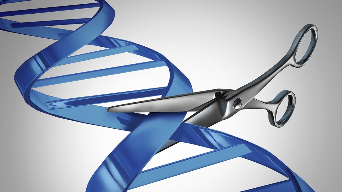 Nedir bu CRISPR-Cas9