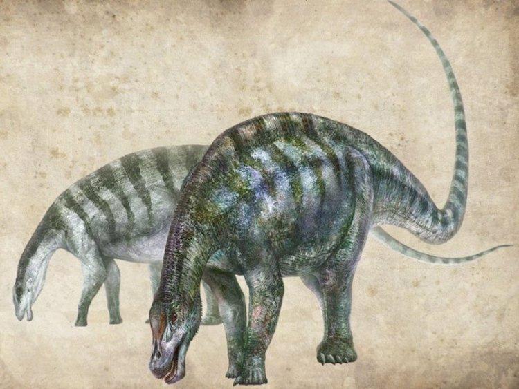 Yeni Bir Dinozor Yanlış Zamanda Yanlış Yerde Bulundu