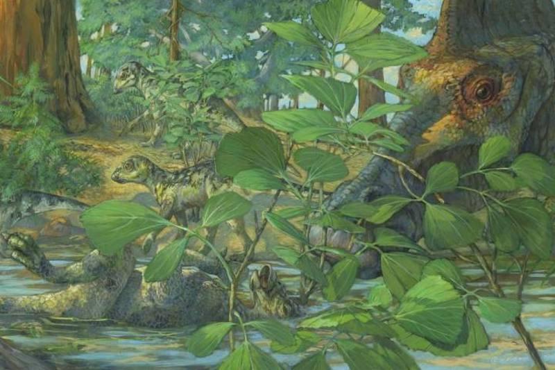 Dinozor Kafatasında Fosil DNA İzleri Keşfedildi