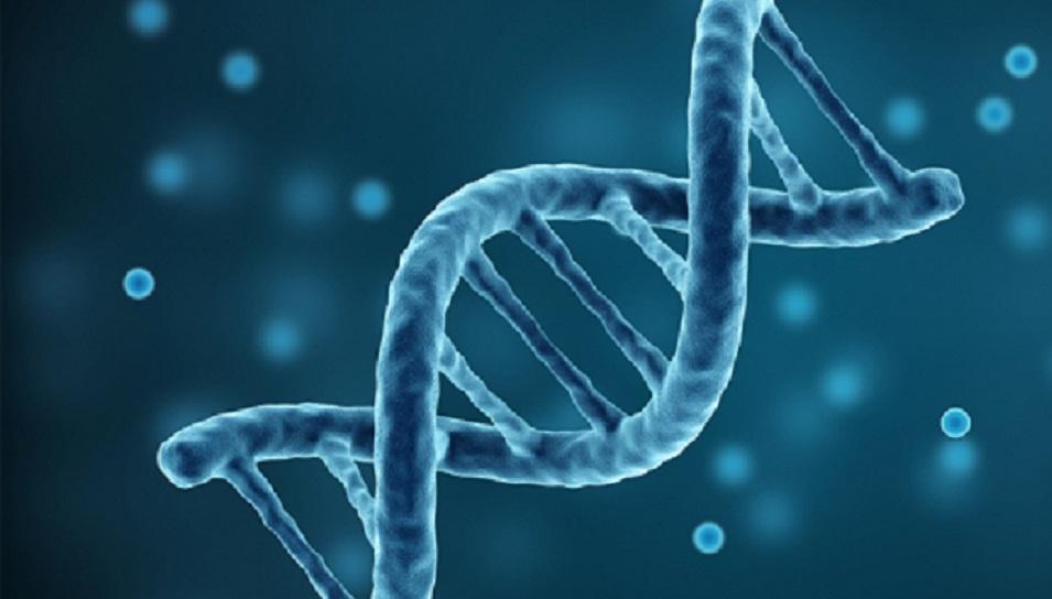 Mitokondriyal DNA'daki değişiklikler sağlığı ve gelişimi etkileyebilir mi?