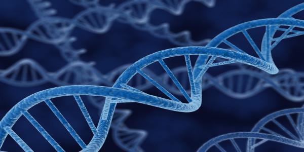 DNA Onarımı - Yaşam İçin Kimyasal Denge Sağlar