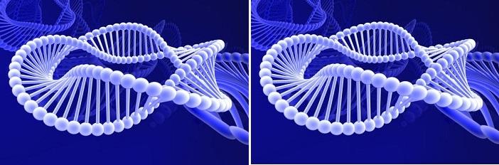 Anne Karnında Bebeğin Kromozomların Ulaşmak Artık Daha Kolay