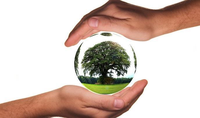 Ekoloji Son Yıllarda Neden Önceki Yıllara Göre Daha Önemli Bir Noktaya Gelmiştir?
