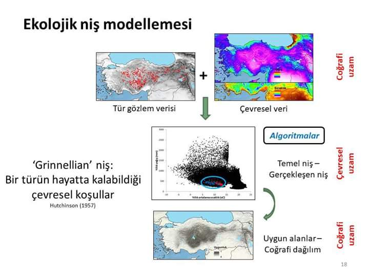 Ekolojik niş modellemesi