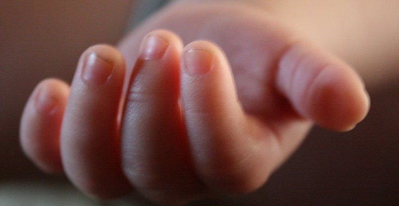 Amerikalı Bilim Adamları, İnsanlarda Kalıcı Gen Düzenlenmesini Destekliyor