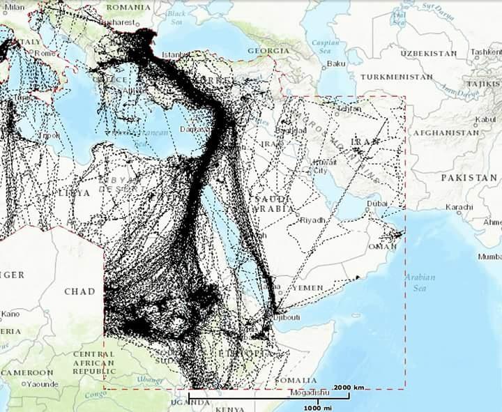 Avrupa'dan Afrika'ya Türkiye üzeri göçen kuşların rotaları