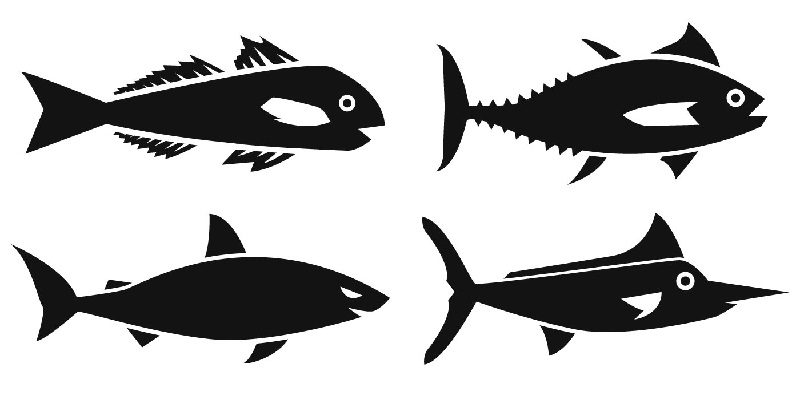 Balıklarda Üreme