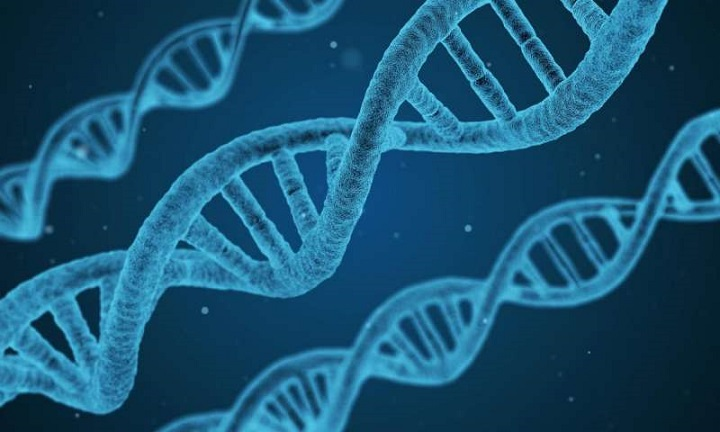 Genler Soğuk Algınlığının Şiddetini Artırır