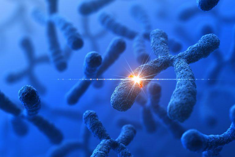 Gen Mutasyonları Nasıl Oluşur