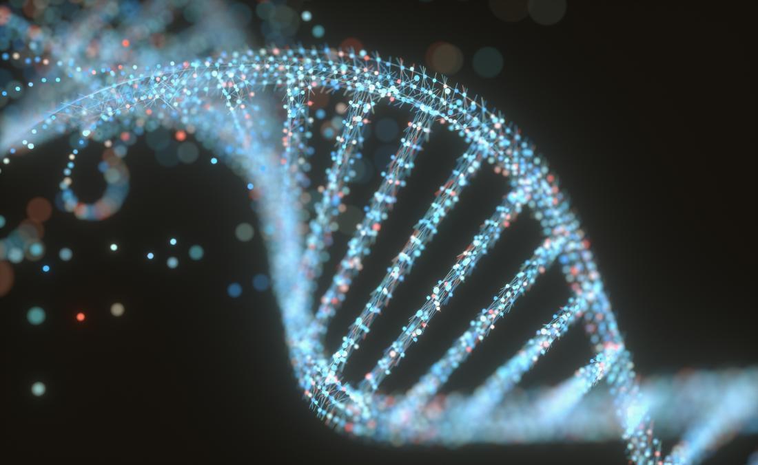 Tek bir gendeki değişim, insan beyninin evrimini nasıl etkilemiştir?