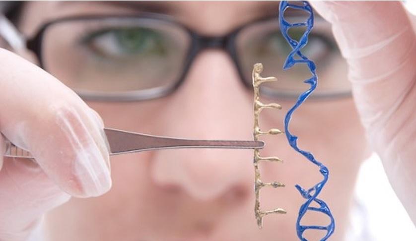 İnsan Gen Terapisi '' İlaç Olarak Genlerin Kullanımı '' Kaderimiz Genlerimizde Mi?
