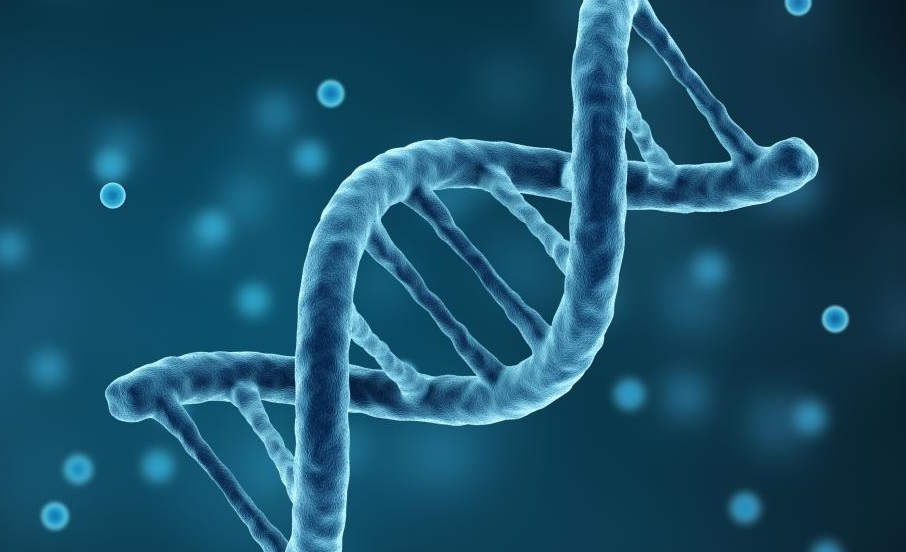 Araştırmacılar, yeme bozukluklarının genetik yapısını keşfediyor.