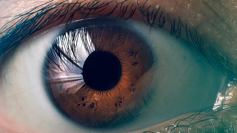 Duyu organlarımızın işleyişi: Göz ve görme olayı