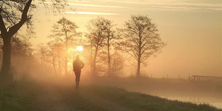 Hava Kirliliği Kemik Sağlığını Kötü Etkileyebiliyor