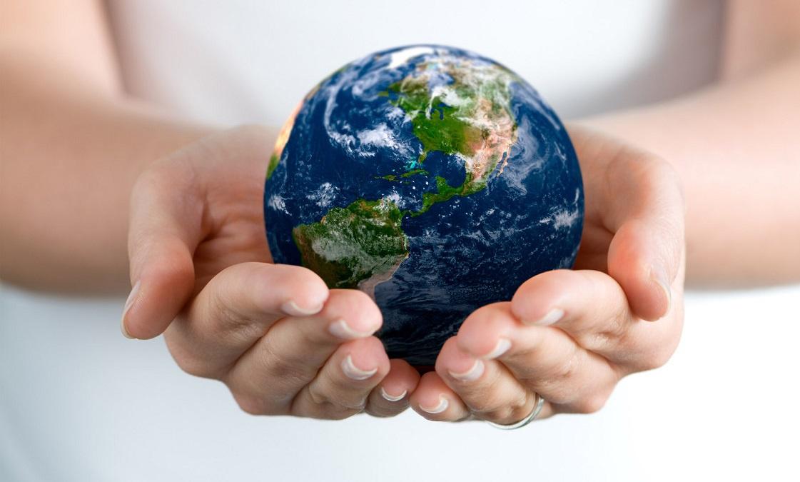 Ekolojik kriz nedir?