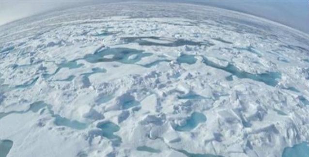 İlk Hayvanlar Buzul Çağında Nasıl Hayatta Kaldı?