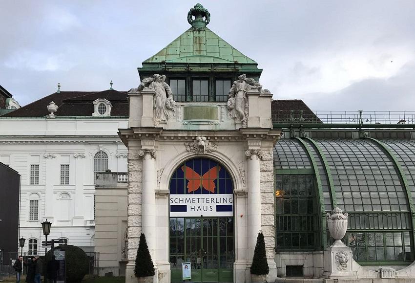 Viyana Kelebek Evi - Viyana Schmetterlinghaus